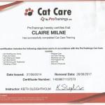 cat care0001