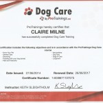 dog care certificate